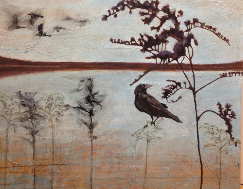 cropped-crow.jpg